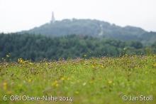 Ori Obere-Nahe 2014_205