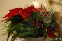 Weihnachtsfeier 2014_13